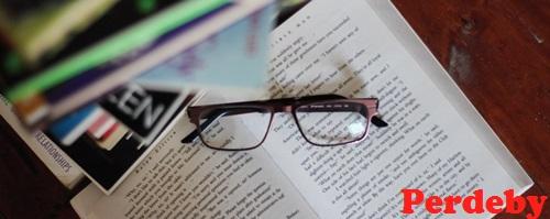 Novels for novices