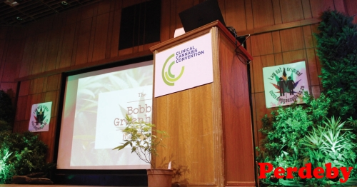 South Africas first clinical cannabis convention
