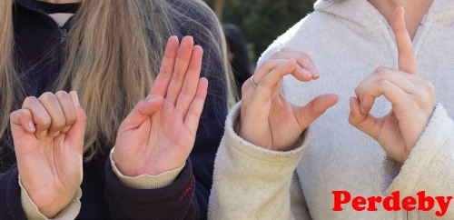 South African Sign Language to be given official status