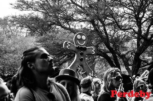 SA's best music festivals