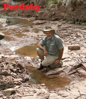 SA helps with study of fantastic fossils