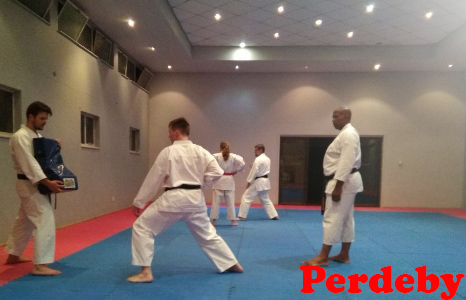 Karate Academy Self Defence Experience