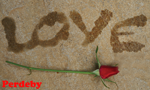 Love and legends: the truth behind Valentine's Day myths and traditions