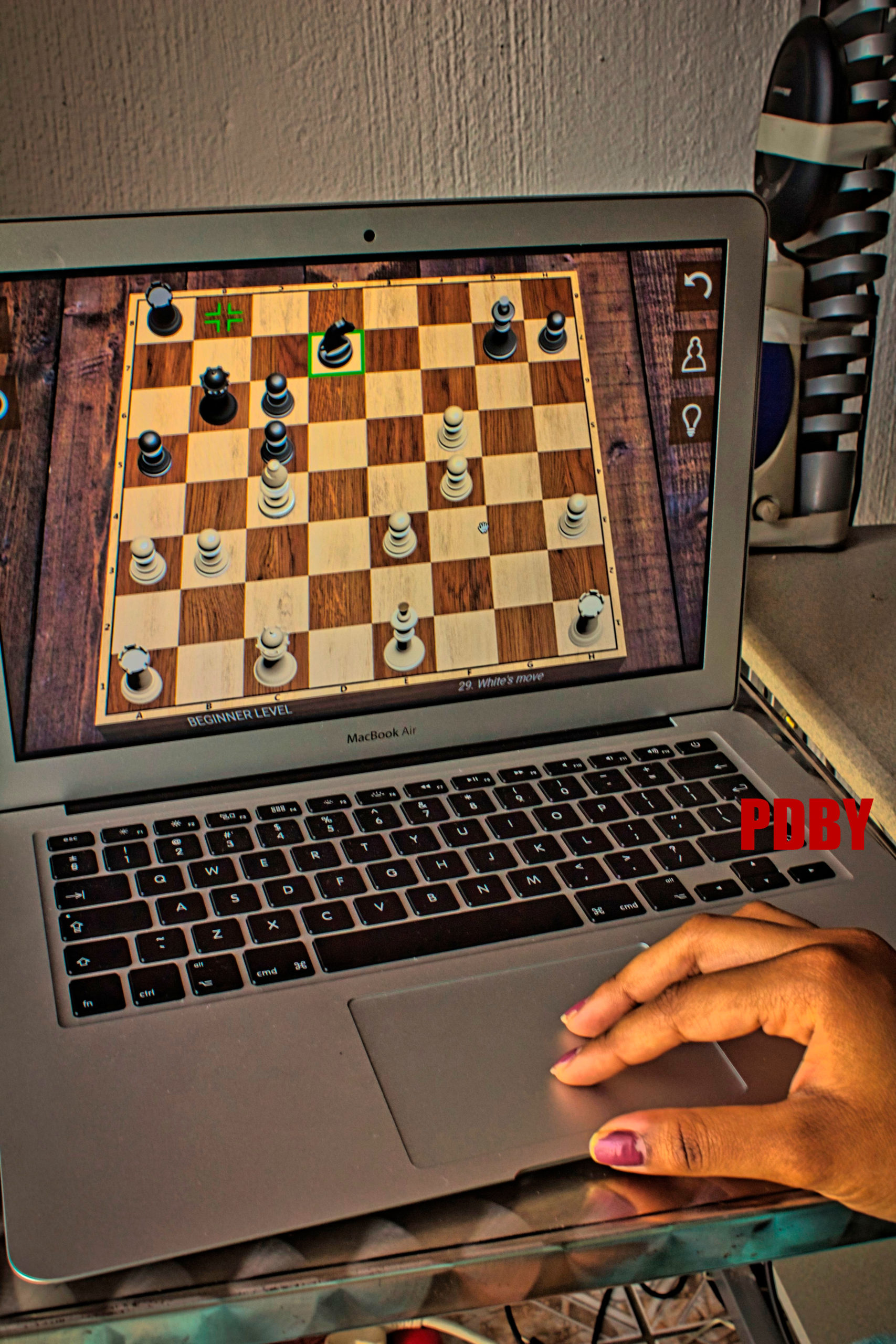 UP hosts chess online