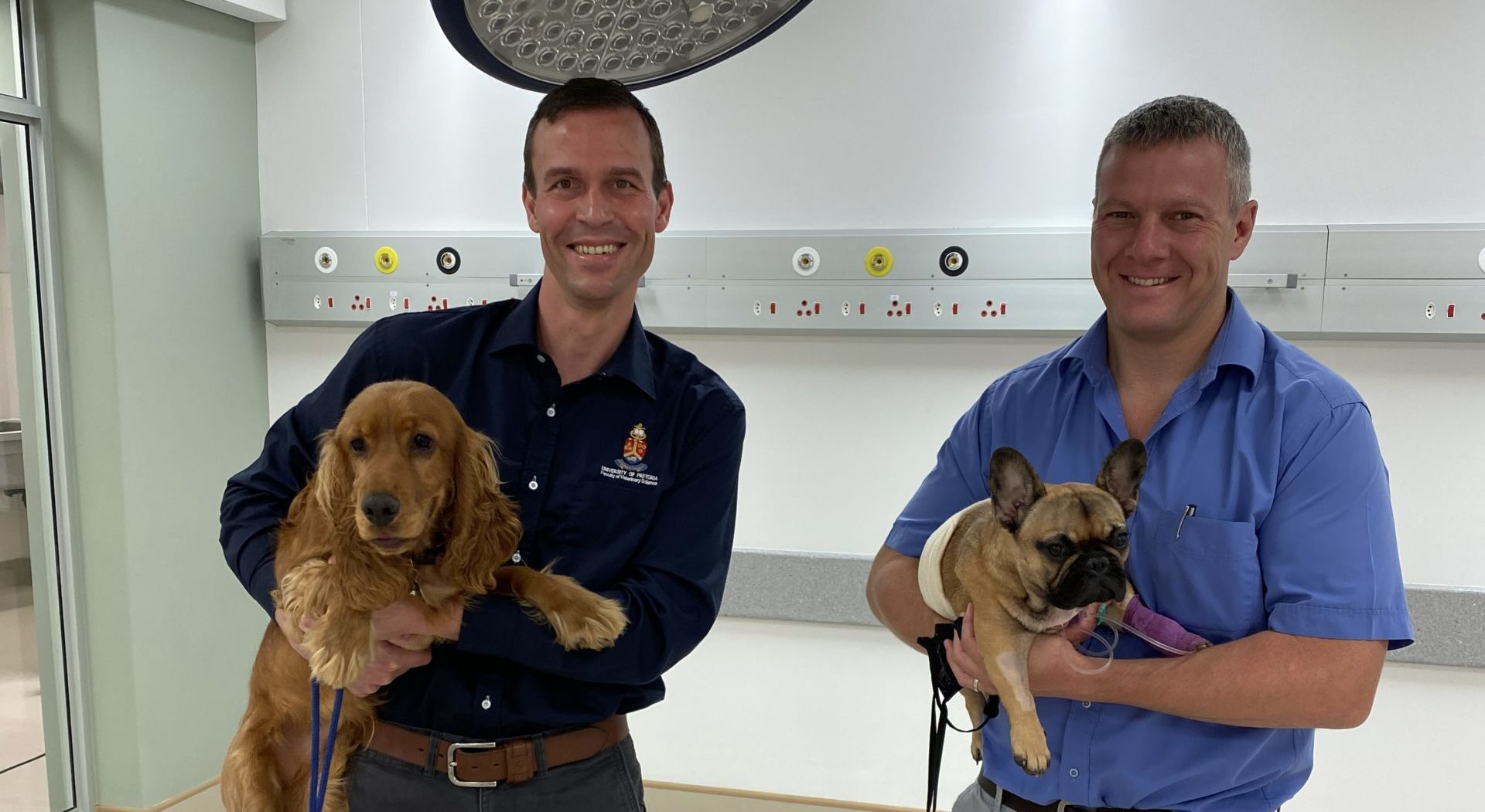 UP vets save lives of two dogs using ground breaking technique